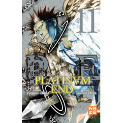 PLATINUM END T11