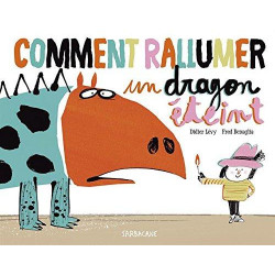 COMMENT RALLUMER UN DRAGON ETEINT